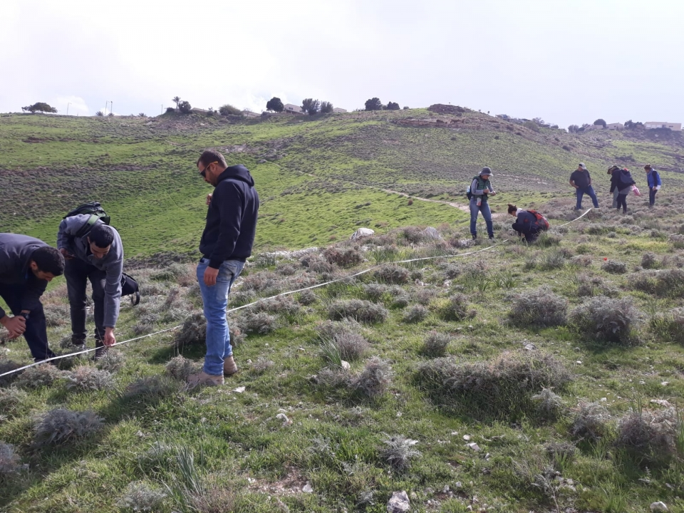 The course participants experiencing quantitative identification of the plant community on the slopes of Wadi Qelt, Judean desert