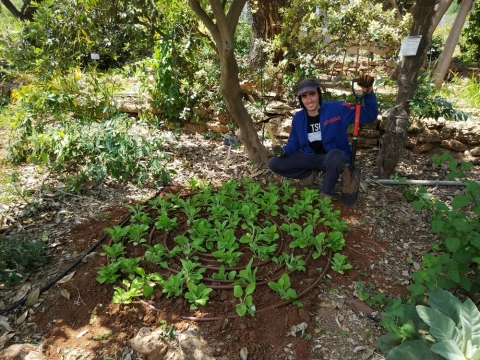 Guy Dan, in charge of cultivating the medicinal plant section, presents the foxglove bed, photo: Tal Levanony
