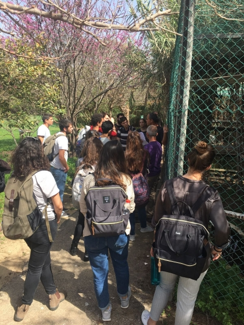 The students on a tour in the Zoological Garden  photo: Noga Kronfled-Schor
