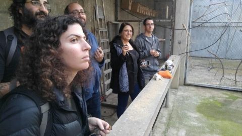 National training course on the ethics of working with birds, Photo: Asaf Moran